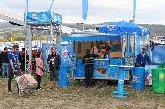 Frisco -  festival extreme