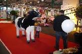 Schweizer Milchproduzenten SMP - Messe Werbung